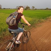 Durch Reisfelder