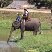 Im Thai Elefant Conservation Center