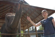 Auf Wiedersehen! (Thai Elephant Conservation Center, Lampang)