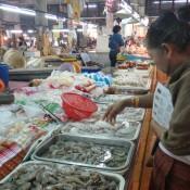 Kochlehrerin Wan Nee Sucht Die Tintenfische Aus