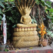 Samstag Buddha