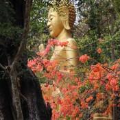 Buddha Auf Dem That Phu Si