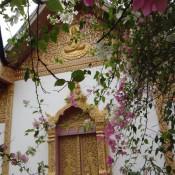 Im Wat Xieng Muane