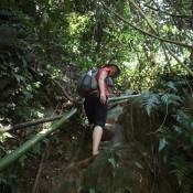 Steiler Weg Zum Wasserfall