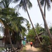Spaziergang Auf Don Khon