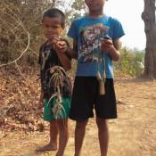 Laotische Kinder Haben Chamäleons Mit Der Steinschleuder Erlegt