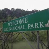Im Bako Nationalpark
