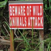 Warnung Vor Wilden Tieren