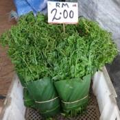 Dschungelfarn – ähnlich Wie Spinat