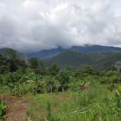 Blick Von Unserer Unterkunft Auf Den Mulu Nationalpark