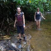 Wandern Durch Den Fluss