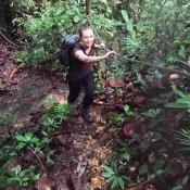 Zurück Zur Deer Cave