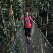Canopy Skywalk