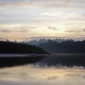 Am Frühen Morgen Auf Dem Kinabatangan Fluss