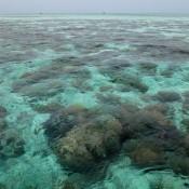 Glasklares Wasser Vor Der Insel Sibuan