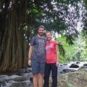 Am Flußufer Vor Einem Großen Banyan Feigenbaum