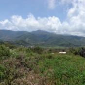 Blick Auf Moni Und Die Berge