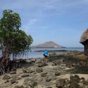 Wanderung Um Die Insel Kanawa