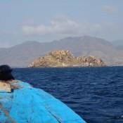 Ausflug Nach Komodo