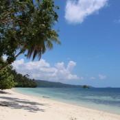 Am Hausstrand Vom Biodiversity Auf Der Insel Gam