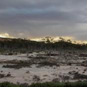 Skurrile Landschaft Am Wave Rock