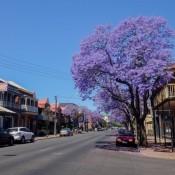 In Den Straßen Von Adelaide