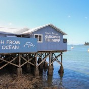Frischer Fisch In Mangonui