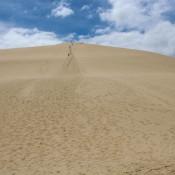 Die Längste Abfahrt In Den Dünen…