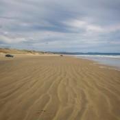 Am Ninty Mile Beach