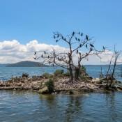 Am Lake Rotorua