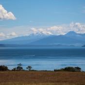 Blick über Den Lake Taupo Und Auf Berge