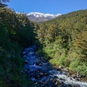 Blick Vom Campingplatz Auf Den Ruapehu