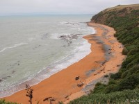 Bushy Beach