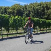 Auf Dem Weg Zur Nächsten Weinprobe