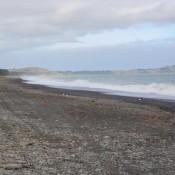 Am Strand In Kaikoura