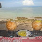 Frische Kokosnuß Und Ananas Zur Begrüßung
