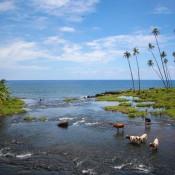 Mu Pagoa Wasserfall, Der Ins Meer Fällt