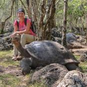 Nicole Und Die Riesenschildkröte