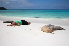 Seelöwen an der Gardner Bay auf Española (Galapagos – 2 Wochen im Naturparadies)