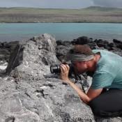 Seppel Beim Fotografieren Einer Lavaechse