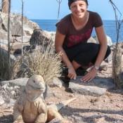 Galapagos Landleguan Und Nicole