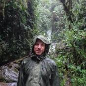 Regenwetter Im Regenwald