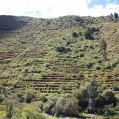 Inka Terrassen
