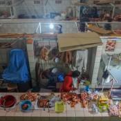 Auf Dem Markt In Puno