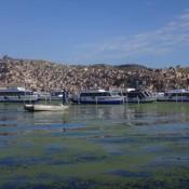 Viele Boote Im Hafen Von Puno
