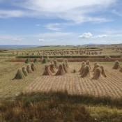 Schöne Landschaft Am Titikaka See