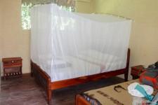 unser Zimmer (Im Amazonas-Regenwald)
