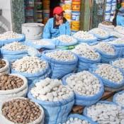 Die Unterschiedlichsten Kartoffelsorten Auf Dem Gemüsemarkt